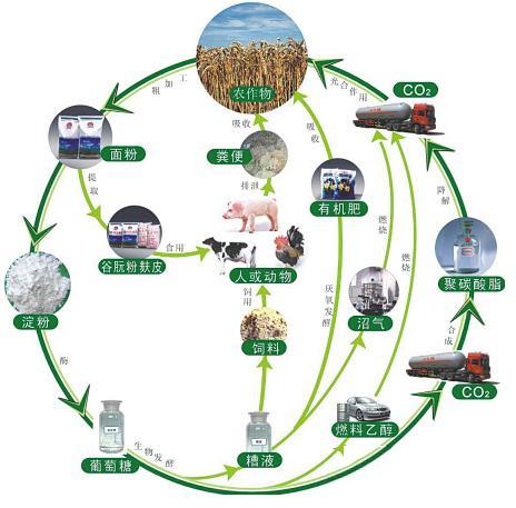 生物质发电